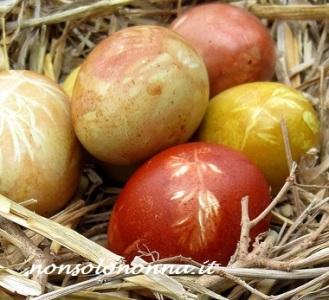 nature uova