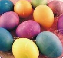 uova di nat