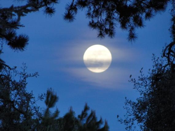 24 Giugno la magica notte di...San GIOVANNI