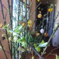 BUONA PASQUA ...simboli e ricette, la schiacciata di Pasqua all'olio di oliva post 2