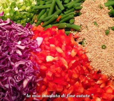 cavolo rosso pomodori quinoa fagiolini porro